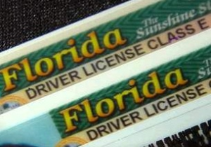 drivers-licenses